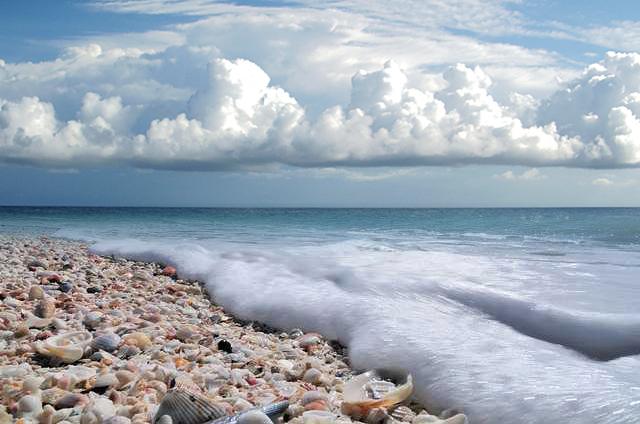 Shell Beach Sanibel Island Florida